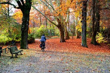 Bicicletta nel parco in autunno