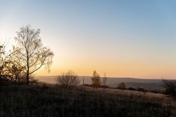 Paysage d'automne en fin de journée avec la silhouette de la végétation et des arbres