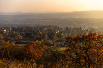 Paysage urbain avec la vue des arbres et de leurs couleurs d'automne