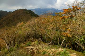 塔ノ岳 鍋割山 33