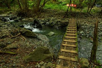 塔ノ岳 鍋割山 36
