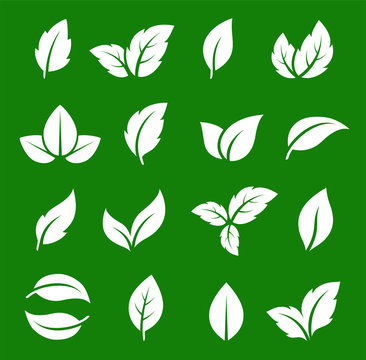 set of abstract natural green leaf icons