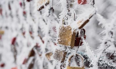Hoarfrost on love locks