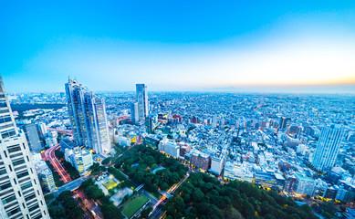skyline night view of shinjuku in Tokyo, Japan