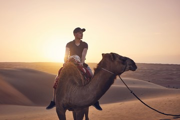 Camel riding in desert Wall mural
