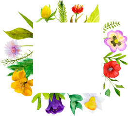 Watercolor illustration of garden and wildflowers combined into a frame. Greeting card, banner and invitation template.