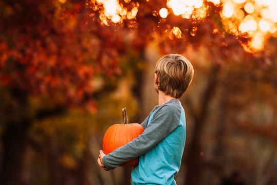 Boy holding pumpkin in garden during sunset
