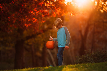 Boy holding pumpkin in garden during sunset