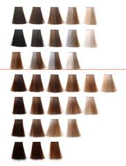 Hair dye sample palette