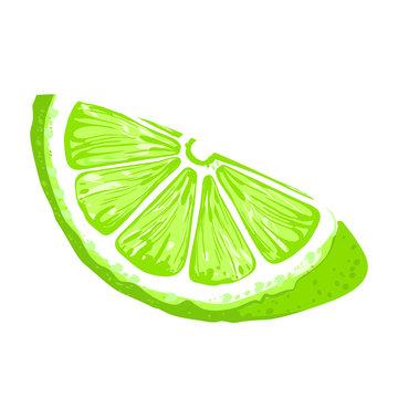 Lime Slice, icon illustration isolated on white background.