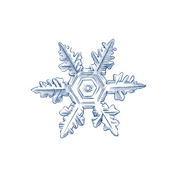 Hand Drawn Snowflake Sketch Symbol isolated on white background. Vector of winter elements In Trendy Style