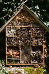 Biodiversité - Hôtel à insectes