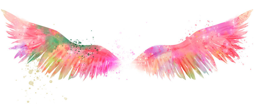 magic watercolor wings