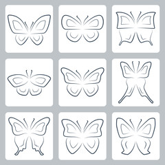 Vector isolated butterflies icons set, thin line or outline style