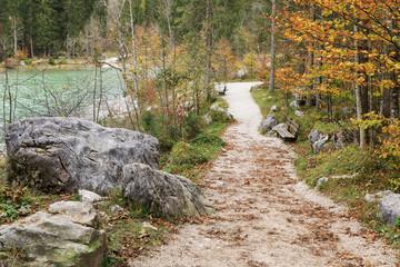 Wanderweg durch den Zauberwald am Hintersee in Bayern mit Felsblöcken aus einem Bergsturz. Ramsau bei Berchtesgaden
