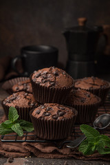 delicious chocolate muffins on  dark background