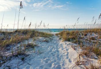 Rosy Dawn at Beach Path