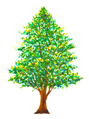 pine tree christmas watercolor painting illustration hand drawing