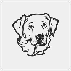 Cute friendly Golden Retriever portrait. Emblem for Pets Shop. Print design for t-shirts.