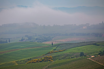 Tuscany landscape in the fog. Morning fog over the rolling hills of Montepulciano, Tuscany, Italy