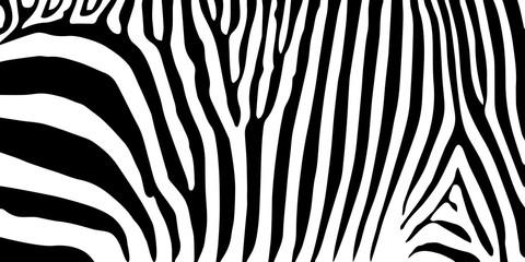 stripe animal jungle texture zebra vector black white print