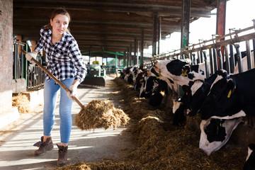 Woman working on dairy farm
