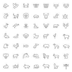 big set of pet and animals icons vector design with simple outline and modern style, editable stroke