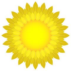 Sun icon. Vector illustration of a bright sun made of petals. Logo sun.
