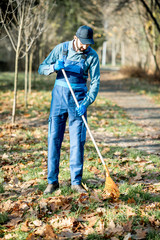 Professional male sweeper in blue uniform raking leaves in the garden during the autumn time