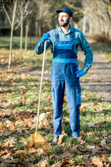 Portrait of a professional male sweeper in blue uniform raking leaves in the garden during the autumn time