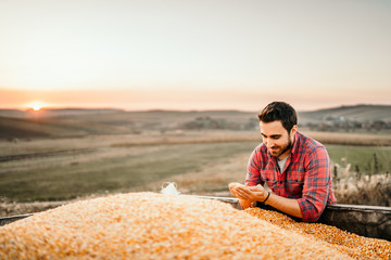 Portrait of harvester at sunset enjoying his harvest in tractor trailer