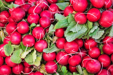red radish with green leaves on the counter of market