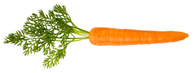 Photo sur Plexiglas Légumes frais SINGLE CARROT CUT OUT