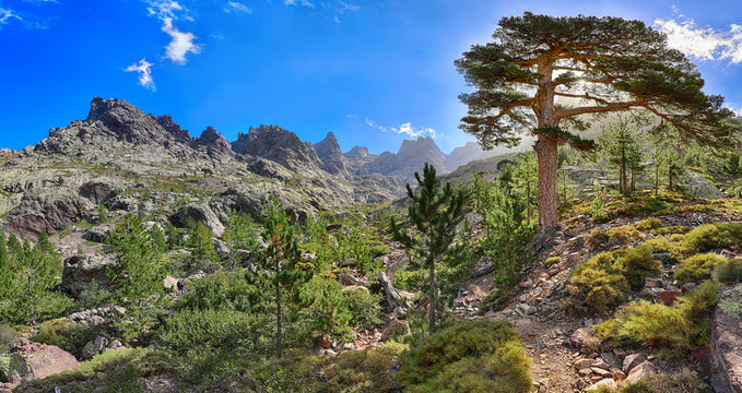 Late afternoon on the GR 20 hiking trail near Asco (Corsica)