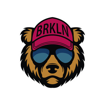 Cool bear in sunglasses. Grizzly in cap
