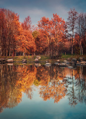 Forest park pond in autumn