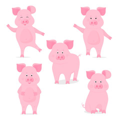 A set of cute piggy characters in different poses, sitting, standing, walking, hand up and down. Funny pig. The symbol of the Chinese New Year