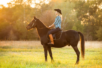 Girl equestrian rider riding a beautiful horse  in the rays of the setting sun.