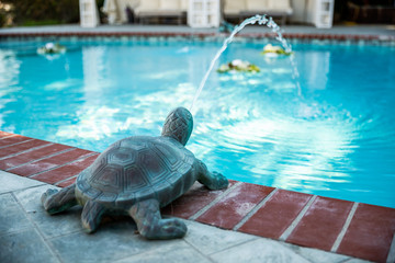 Turtle foundtain at the pool