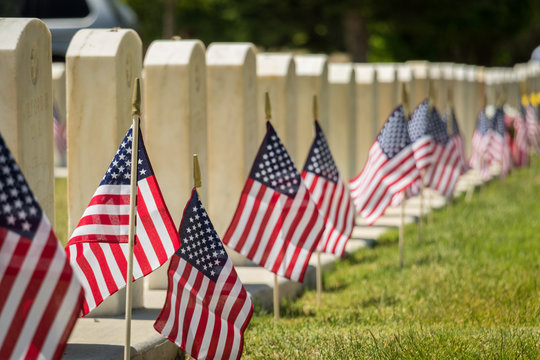 Military Headstones and American Flags on Memorial Day Shallow Depth of Field