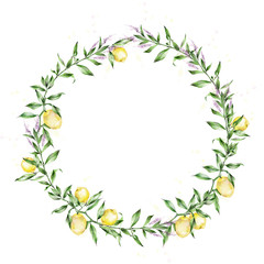 Watercolor illustration. A wreath of lemons. The branches of the lemon tree