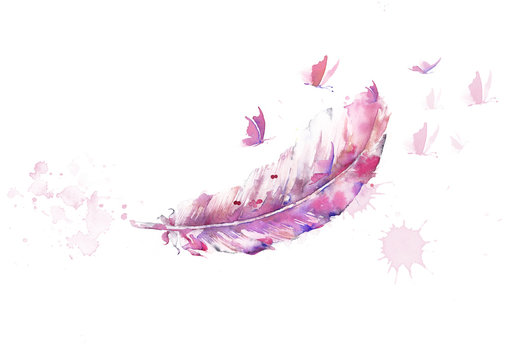 watercolor illustration of feather and butterfly pink