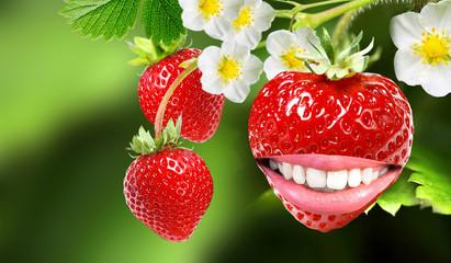 healthy white smile strawberry
