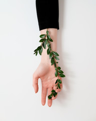Well groomed woman's hand with green leaves on the table..Cosmetics for hands anti wrinkle. Natural beauty, tenderness and skin care concept. Fashion art hands.