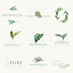 Set of nature and plant logo vectors