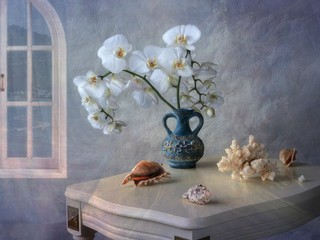 Still life with bouquet of white orchid flowers