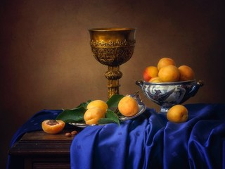 Still life with ripe apricots