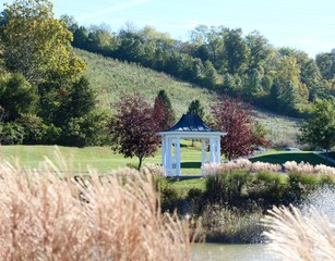 The white gazebo though the brown grass on the shore of pond.