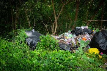 Plastik im Wald