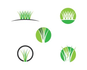 Grass vector illustration